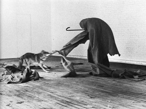 joseph-beuys-e2809ci-like-america-and-america-likes-mee2809d-performance-1974-4.jpg
