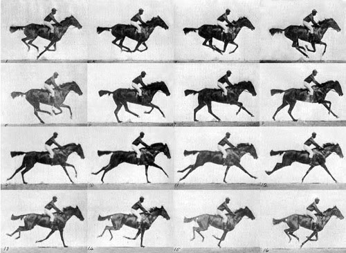 eadweard-muybridge_horse_galloping.jpg