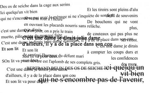 paroles_os_de_seiche.jpg