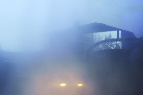 sofia photo brouillard copie.jpg